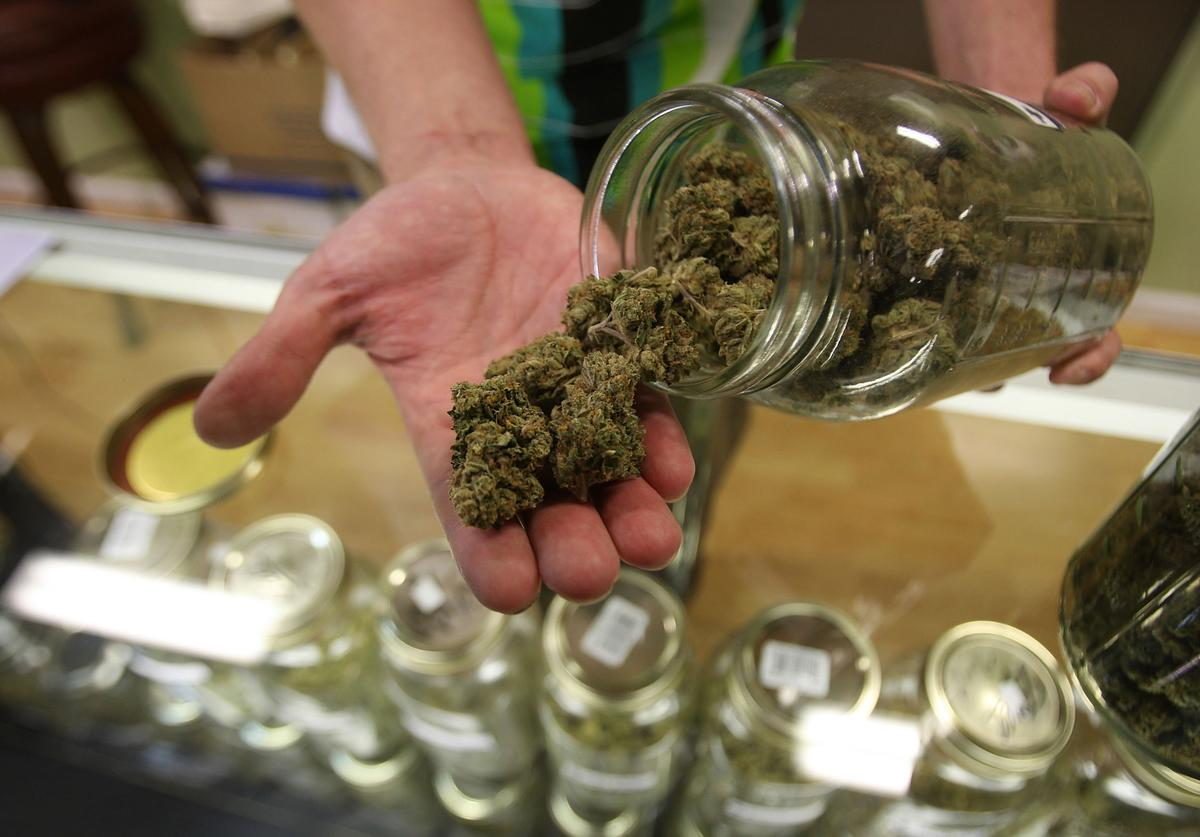 Dave Warden, a bud tender at Private Organic Therapy (P.O.T.), a non-profit co-operative medical marijuana dispensary, displays various types of marijuana available to patients on October 19, 2009 in Los Angeles, California