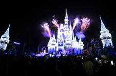 Great-Grandma Arrested At Disney World For Carrying CBD Oil In Her Purse