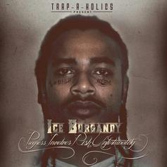 Ice Burgandy - Role Model  Feat. Sean Mack (Prod. By Purpz)