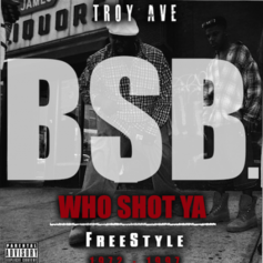 Troy Ave - Who Shot Ya (Freestyle) Feat. BSB