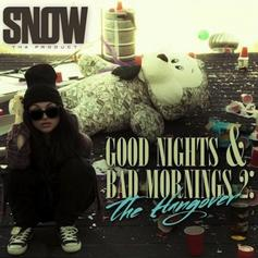 Good Nights & Bad Mornings 2: The Hangover