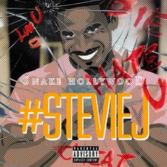 Snake Hollywood - Stevie J  (Prod. By Inspired Mindz)