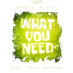 Chris Miles - What You Need  (Prod. By Statik Selektah)