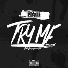 Pizzle - Try Me (Freestyle)