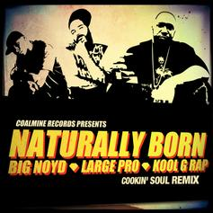 Kool G Rap - Naturally Born (Cookin' Soul Remix) Feat. Big Noyd & Large Professor