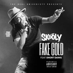 Skooly - Fake Gold Feat. Short Dawg