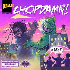 Shelley FKA DRAM & OG Ron C - ChopDamn!