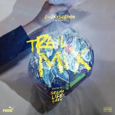 D-JaySremm - Trail Mix
