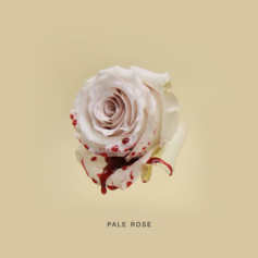 TheMIND - Pale Rose (Prod. By Knox Fortune & THEMpeople)