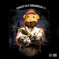 Jay Dot Rain - Cooley Fly Chronicles III