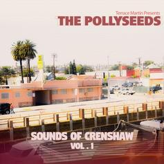 Terrace Martin & The Pollyseeds - Intentions Feat. Problem