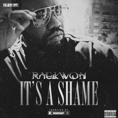 "Raekwon Drops Off His New Single ""It's A Shame"""
