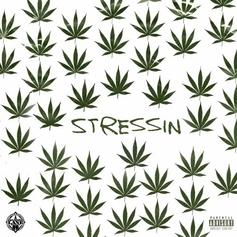 "Problem Relieves His Mind On New Song ""Stressin"""