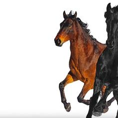 """Lil Nas X & Billy Ray Cyrus Bring Even More Country To """"Old Town Road"""" With Remix"""
