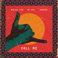 "Major Lazer's Walshy Fire Teams Up With Mr Eazi & Kranium On ""Call Me"""