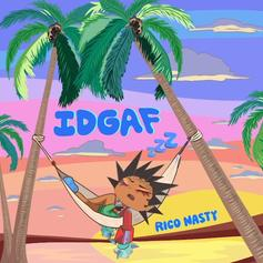 "Rico Nasty Doesn't Have A Care In The World On ""IDGAF"""