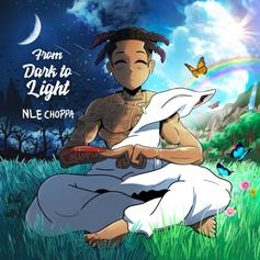 "NLE Choppa Celebrates Birthday With ""From Dark To Light"" Project"