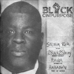 "Salaam Remi Enlists Nas, Black Thought & More For ""Black On Purpose"""