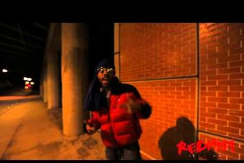 "Redman ""Hammertime"" Video"