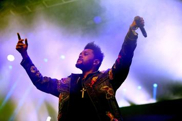 The Weeknd's Private Concert Cancelled At Last Minute
