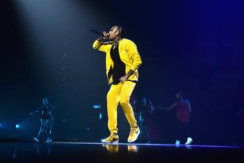 "Chris Brown Apologizes To Fan He Called ""Lame"""