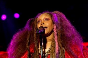 Erykah Badu Opens Up On The Stretch & Bobbito Show: Listen