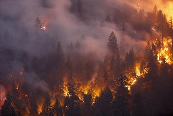 A Massive Arizona Wildfire Was Caused By A Gender Reveal Party Gone Wrong