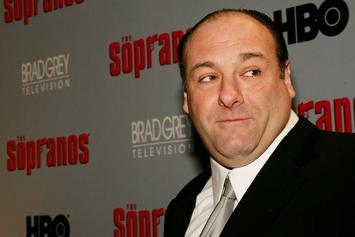 """""""The Sopranos"""" Prequel Series Garners Interest From HBO Boss"""