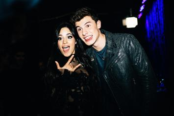 """Camila Cabello Says """"I Love You"""" To Shawn Mendes On Singer's 21st Birthday"""