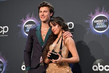 "Camila Cabello Talks ""Romance"" With Shawn Mendes: ""I Just Love Him"""