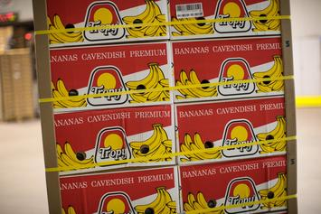 Banana That Sold For 120K At Art Basel Miami Eaten By Performance Artist