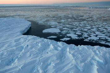 Antarctica Reaches 65 Degrees, Warmest Temperature Its Ever Seen