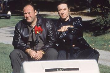 """The Sopranos"" Visual Dictionary Defines The Show's Slang Alongside Classic Clips"