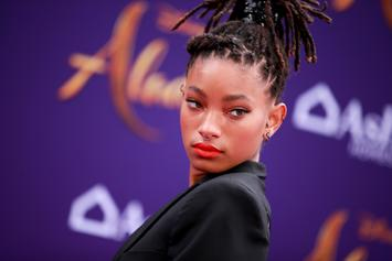 "Willow Smith Felt ""Shunned"" By Black Community For Being Different"