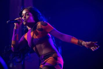 """Azealia Banks Plans To Turn Dead Cat's Bones Into Earrings: """"This Is Fashion"""""""