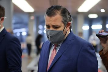 Ted Cruz Abandons Dog In Texas During Cancun Fiasco: Report