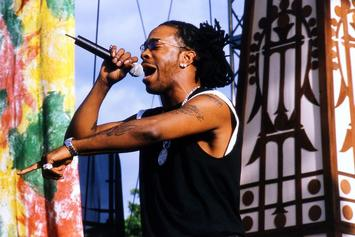 Busta Rhymes Reflects On Debut Album's 25th Anniversary