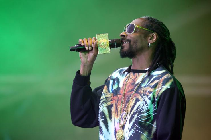 Snoop Dogg aka Snoop Lion performs live for fans during the 2014 Big Day Out Festival at Western Springs on January 17, 2014 in Auckland, New Zealand