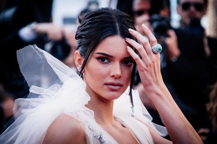 Kendall Jenner 'Arrogant,' Uncaring After Dog Bites Girl, Grandfather Says