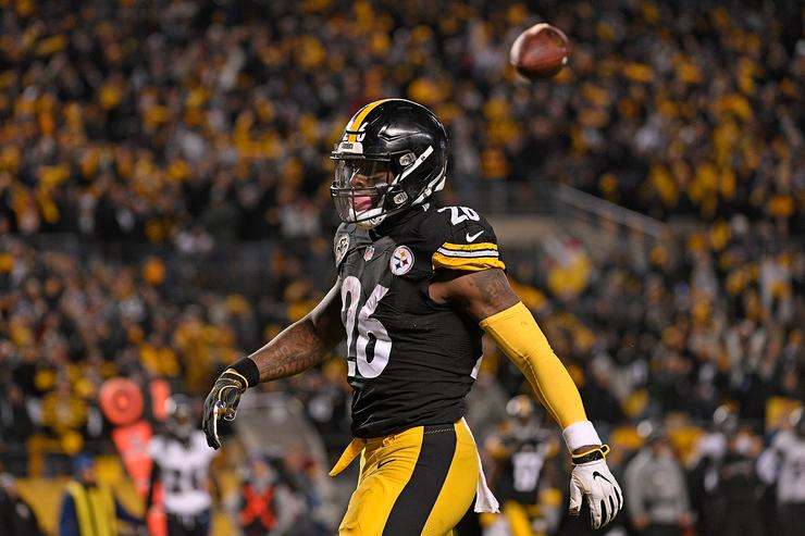 Pittsburgh Steelers CB Joe Haden has mild hamstring pull